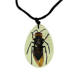The Olivia Collection Phosphorescent Grand Bug Collier Avec